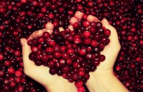 Does cranberry raise or lower blood pressure?